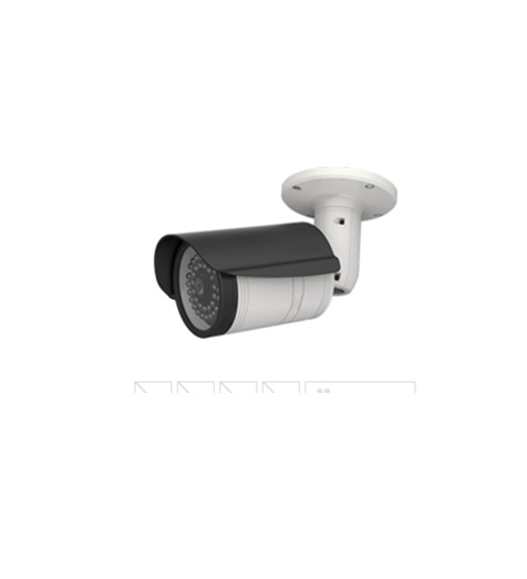 Camera IP iCanView387MP